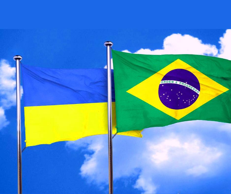 Латиноамериканський досвід: науковці обговорили особливості викладання англійської мови в Україні та Бразилії